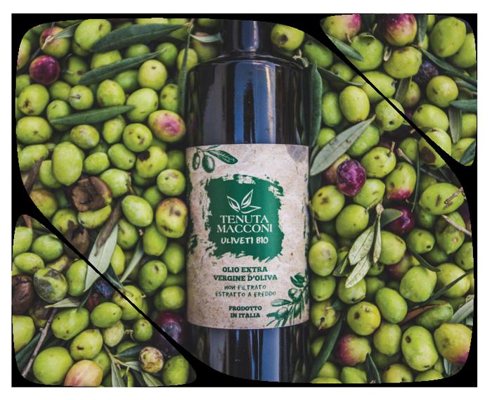 Prodotti biologici di Sicilia: Tenuta Macconi